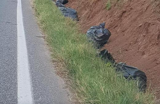 """La disastrosa inefficienza del carrozzone mangiasoldi """"Pignataro Patrimonio srl in liquidazione"""": decine di grandi sacchi di rifiuti abbandonati per un mese intero nei fossi di via Calvi"""