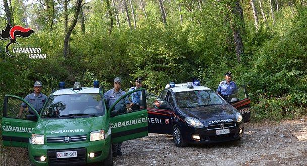 Vairano Patenora, carabinieri forestali sorprendono un cacciatore che aveva abbattuto esemplari di uccelli non cacciabili