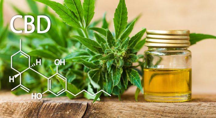 Stress: olio al CBD il tuo migliore alleato per sconfiggerlo