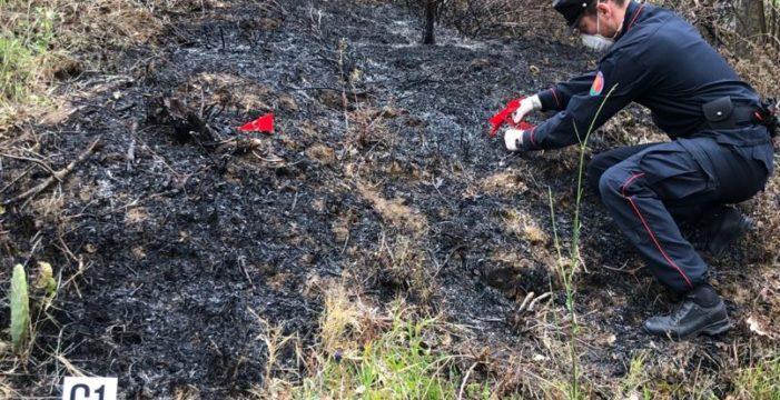 Camigliano, 25enne finisce agli arresti domiciliari perché accusato di aver appiccato quattro diversi incendi su 38 ettari di bosco