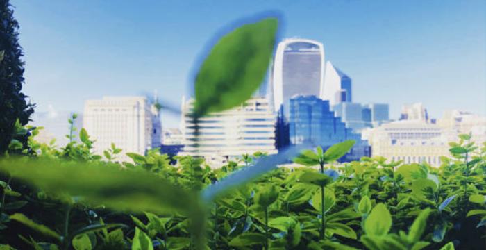 Città sostenibili: i requisiti e l'impegno personale